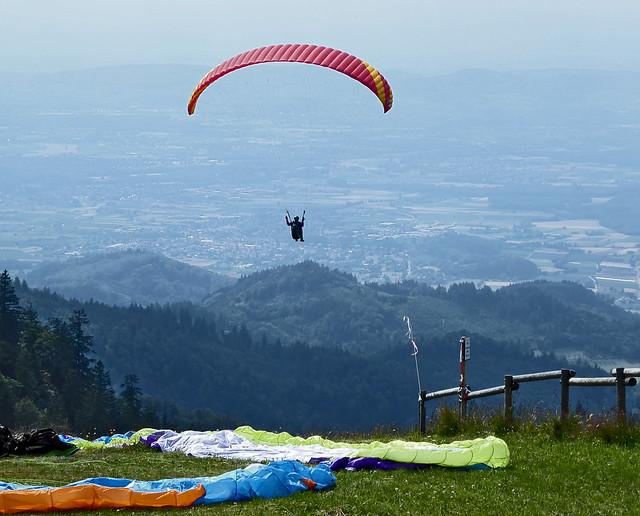 Paragleiter im Schwarzwald
