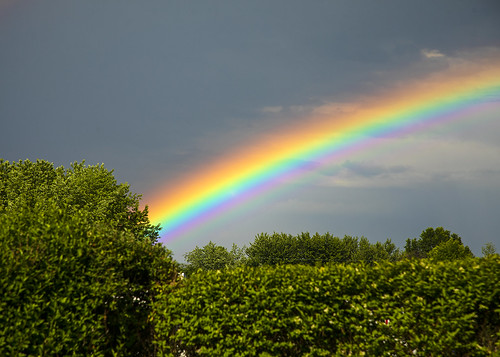 friday tgif life nature landscape rainbow rain rainy storm summer beautiful hope promise weekend canon 2020