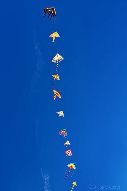Aquiloni - Flying kites