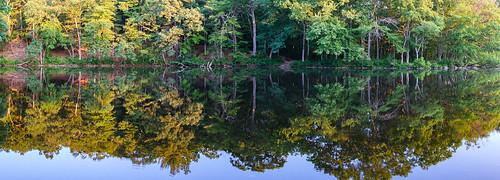handheld lake landscape reflection statepark summer sunrise trees ashland massachusetts unitedstatesofamerica
