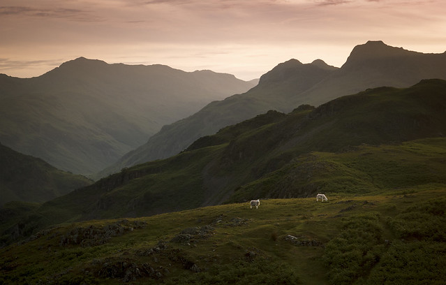 Looking west from Dow Bank, Langdale, Lake District National Park, Cumbria, UK