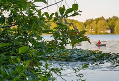 Bass Lake-06848