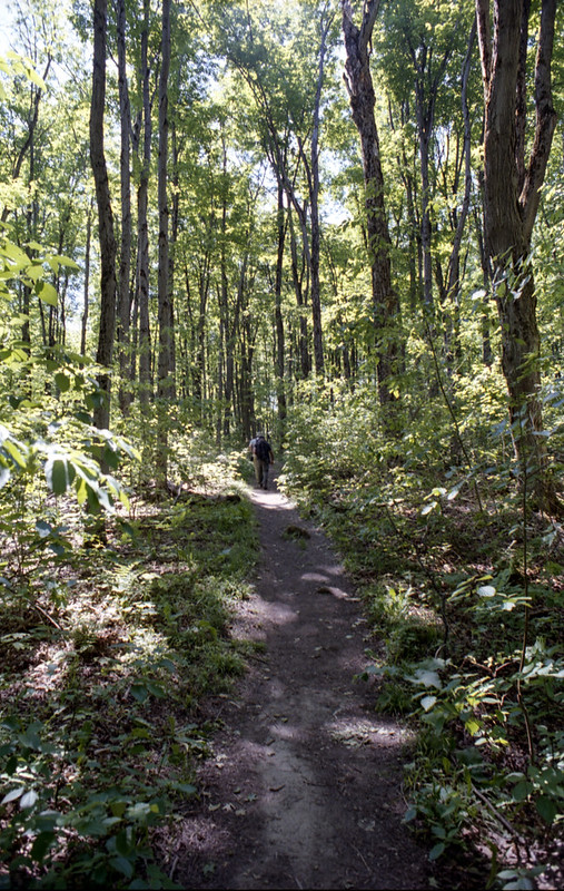 On the Bruce Trail Ahead