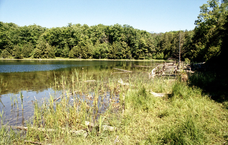 Mc Carston's Lake 2020 Three