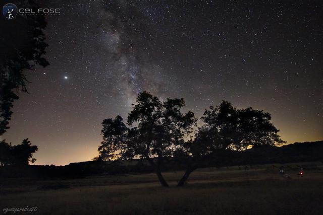 La Vía Láctea tras el Alcornoque