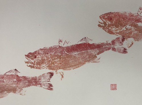 Sea bass - 024 | £62 inc p&p UK | 2020 | 51x38cm | Japanese Paper Mounted on Fabriano Artistico Paper