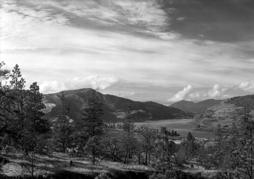 filmphotography film columbiagorge columbiariver mosier oregon pacificnorthwest garyquay garylquay analog 5x7 trees clouds river whiteoak easterncolumbiagorge autumn fall pinetrees usa