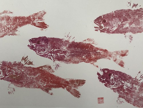 Sea bass - 021 | £62 inc p&p UK | 2020 | 51x38cm | Japanese Paper Mounted on Fabriano Artistico Paper