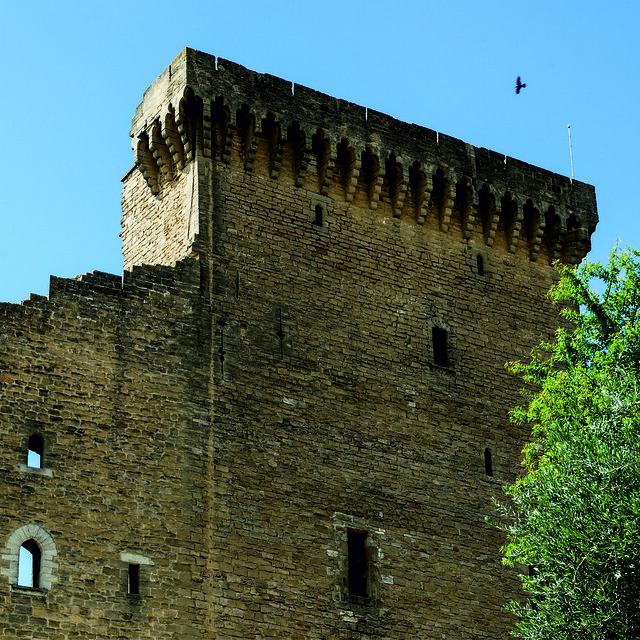 la tour de Châteauneuf du Pape