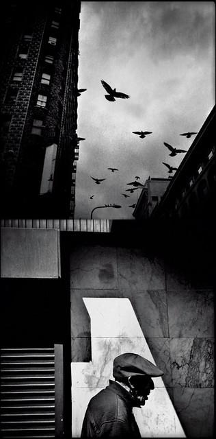 Urban Diptych