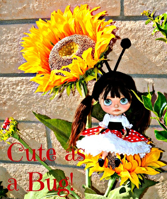 BaD June 27 - Bugs