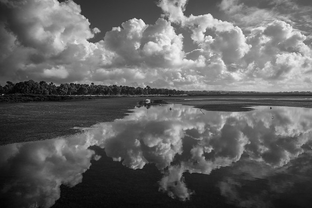 Reflections BNW
