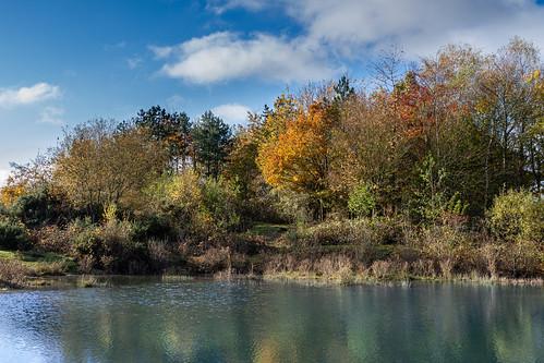 trees water canon7d sigma2470mmf28 thatcham england unitedkingdom landscape lake