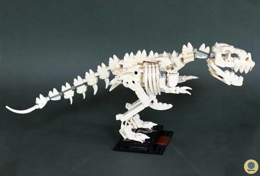 21320 Dinosaur Fossils 10