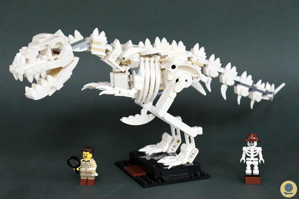 21320 Dinosaur Fossils 1