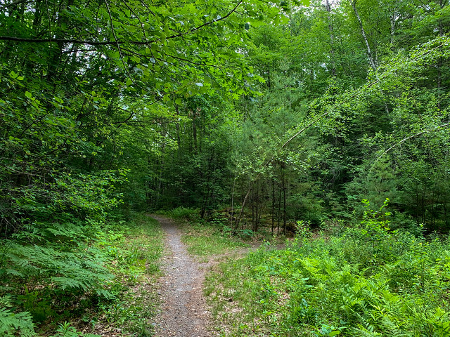 0:03:34 (4%): hiking lebanon newhampshire burntmountain bostonlot unitedstatesofamerica