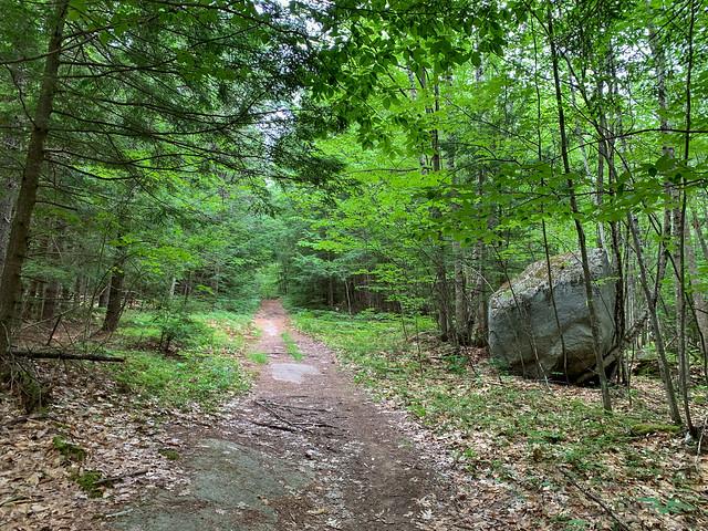 0:06:00 (7%): hiking lebanon newhampshire burntmountain bostonlot unitedstatesofamerica