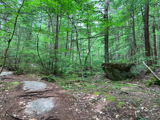 0:23:56 (29%): hiking lebanon newhampshire burntmountain bostonlot unitedstatesofamerica
