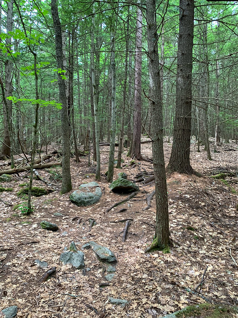 0:30:19 (37%): hiking lebanon newhampshire burntmountain bostonlot unitedstatesofamerica