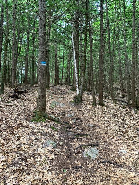 0:31:19 (38%): hiking lebanon newhampshire burntmountain bostonlot unitedstatesofamerica