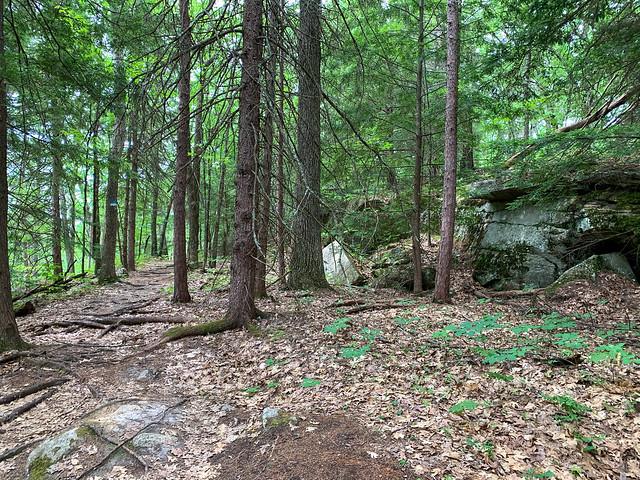 0:34:00 (41%): hiking lebanon newhampshire burntmountain bostonlot unitedstatesofamerica