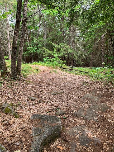 0:35:17 (43%): hiking lebanon newhampshire burntmountain bostonlot unitedstatesofamerica