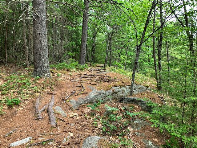 0:49:54 (60%): hiking lebanon newhampshire burntmountain bostonlot unitedstatesofamerica