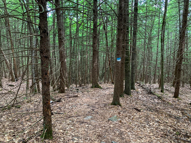 0:52:51 (64%): hiking lebanon newhampshire burntmountain bostonlot unitedstatesofamerica