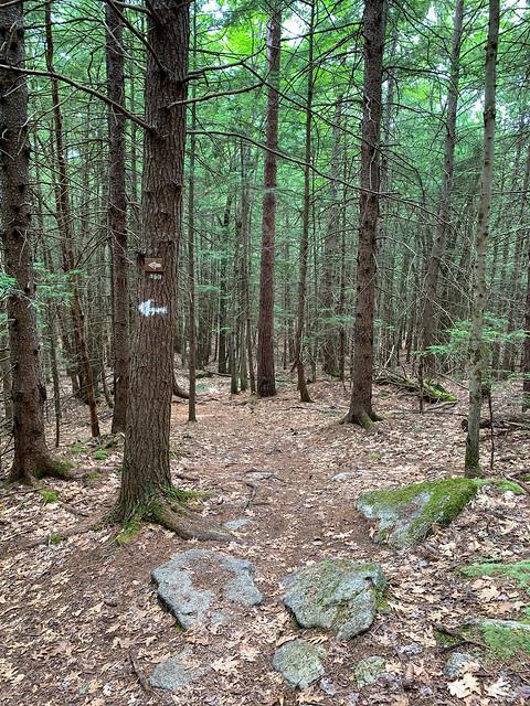 0:53:26 (64%): hiking lebanon newhampshire burntmountain bostonlot unitedstatesofamerica