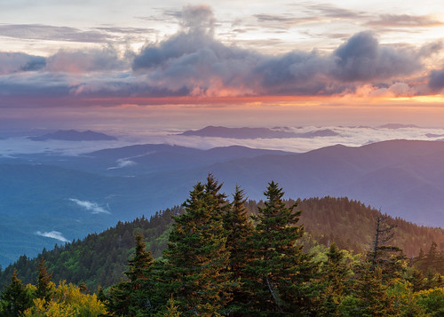 camping cloudinversion dawn greatsmokymountains mountains nationalpark orange pink sunrise