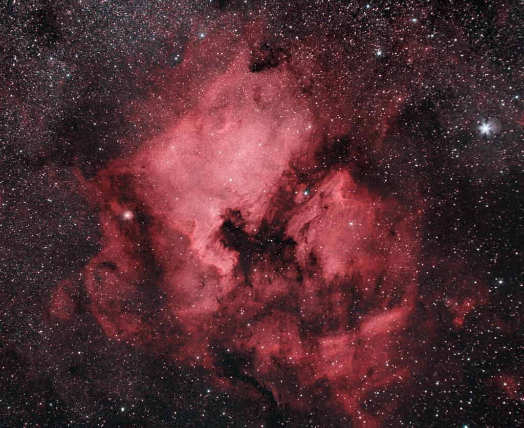 NGC 7000 Észak-Amerika köd, Zeiss 135mm-es objektívvel és ASI294 kamerával, Ágoston Zsolt