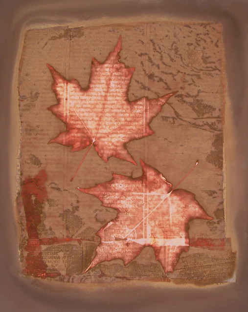 Lumen Print Maple Leaf Still Life by John Fobes: copyrighted all rights reserved