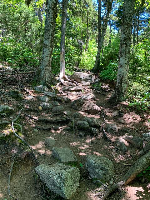 Mt. Kearsarge: hiking winslowtrail newhampshire mtkearsarge wilmot unitedstatesofamerica