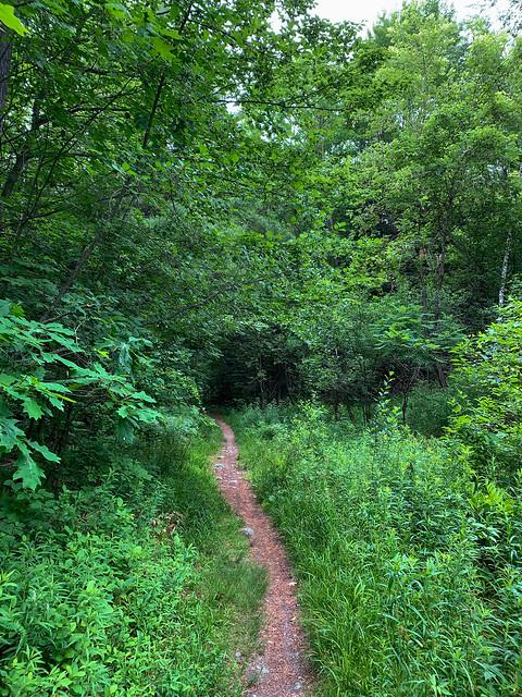 0:02:24 (3%): hiking lebanon newhampshire burntmountain bostonlot unitedstatesofamerica