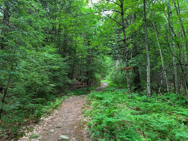 0:04:38 (6%): hiking lebanon newhampshire burntmountain bostonlot unitedstatesofamerica