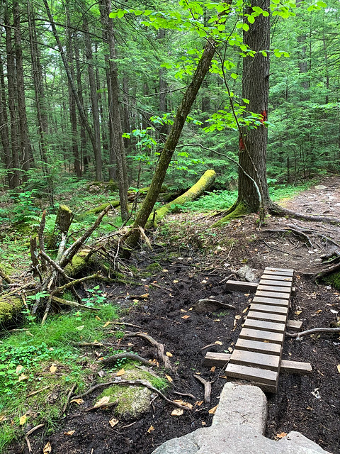 0:59:13 (71%): hiking lebanon newhampshire burntmountain bostonlot unitedstatesofamerica