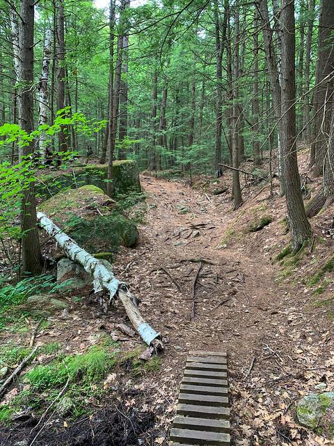 1:01:37 (74%): hiking lebanon newhampshire burntmountain bostonlot unitedstatesofamerica