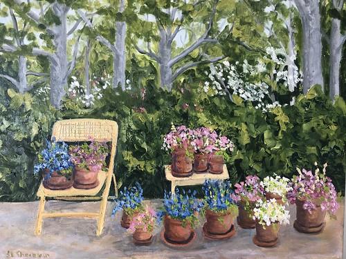 Gardener's Delight 20