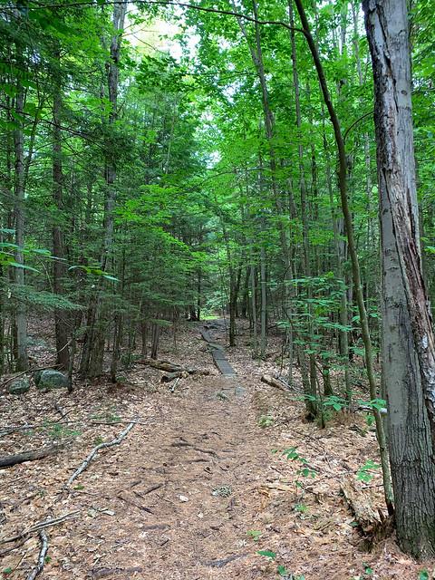 0:09:09 (11%): hiking lebanon newhampshire burntmountain bostonlot unitedstatesofamerica