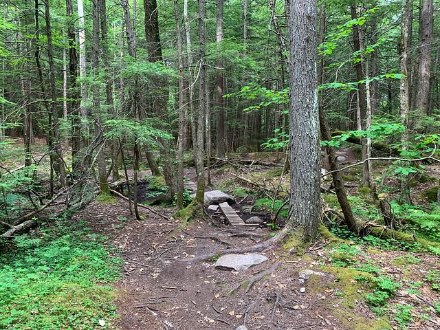 0:24:58 (30%): hiking lebanon newhampshire burntmountain bostonlot unitedstatesofamerica