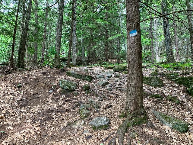 0:33:40 (41%): hiking lebanon newhampshire burntmountain bostonlot unitedstatesofamerica