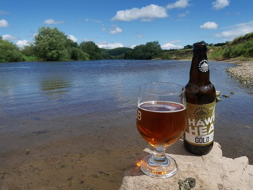 Hawkshead Gold at the River Wye