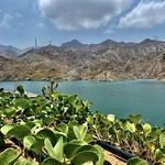 Al Rafisah Dam , Sharjah UAE