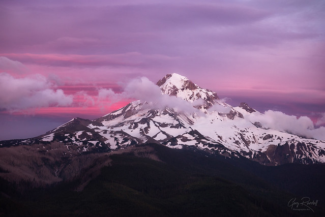 Mount Hood in Pink