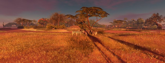 JAMBO! - A Voyage To Africa ...