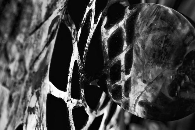 SW Spiegelung Makro Kunst Fotografie Löffel