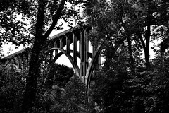 People Drove By Me on a Bridge, And I Walked the Trails of Cuyahoga Valley National Park (Black & White, Cuyahoga Valley National Park)