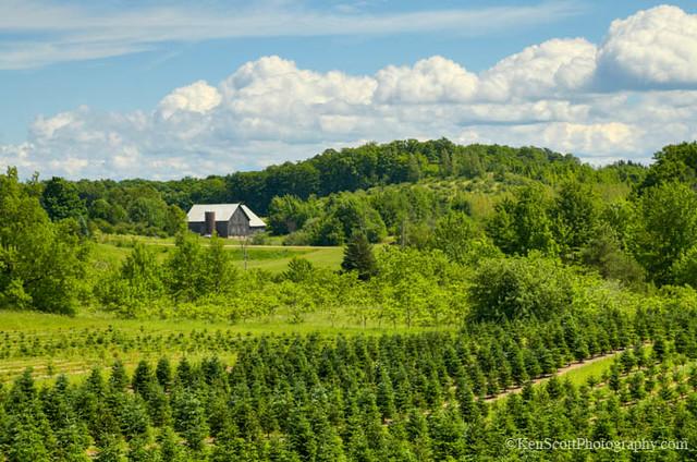 Rural Riches ... farmland