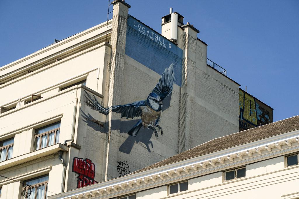 Bird Mural rue de Namur