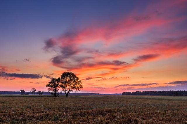 Summer Sky Above The Meadows